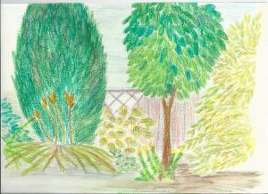Een scan van de tekening op papier, ingekleurd met aquarelpotloden.