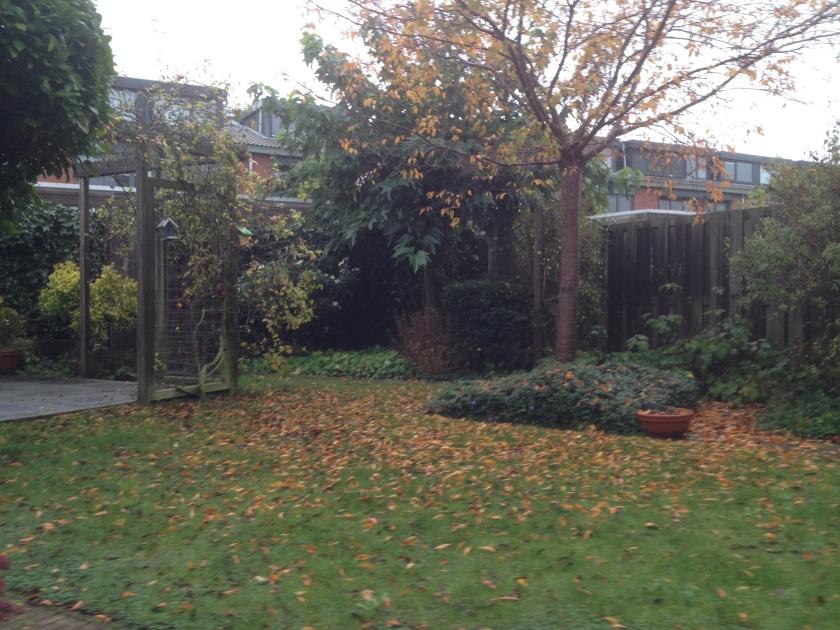 Tuin november 2014