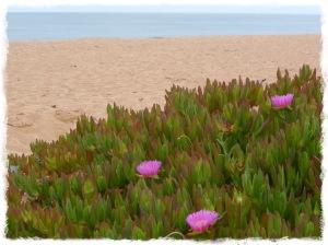 Praia de Trafal