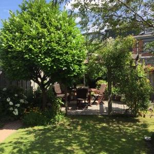 Tuin gekleurde gedachten