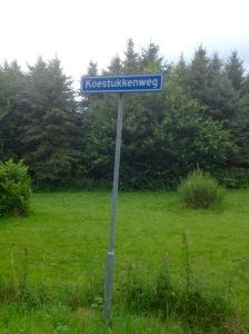 Drenthe, je moet er geweest zijn, Karien Damen, gekleurde gedachten