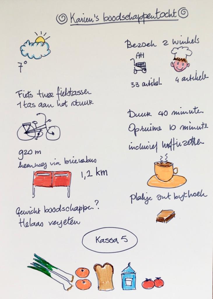 Infographic, Gekleurde Gedachten, Karien Damen